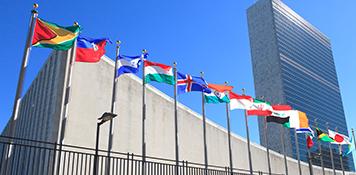 licenciatura-en-administracion-y-negocios-internacionales-img3